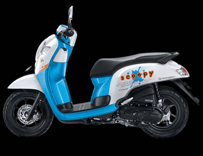 scoopy playful white blue