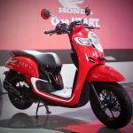 Honda Scoopy 12 inch