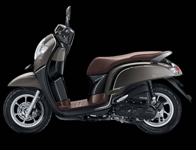 scoopy stylish brown