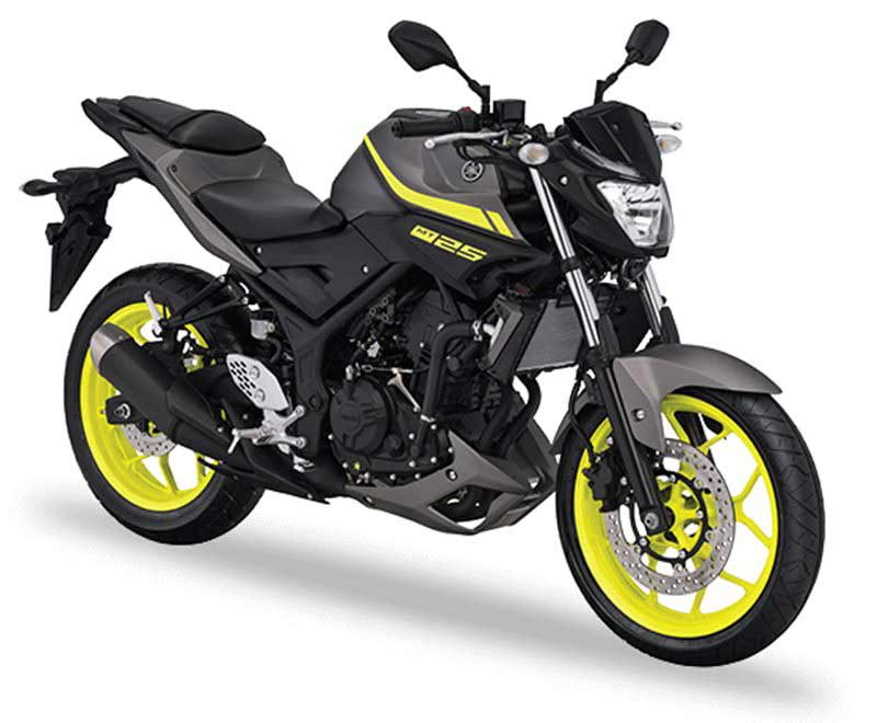 Update Yamaha MT25 2018
