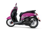 https://goozir.com/yamaha-freego-vs-honda-scoopy-2019/
