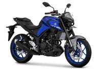 Warna Yamaha MT25